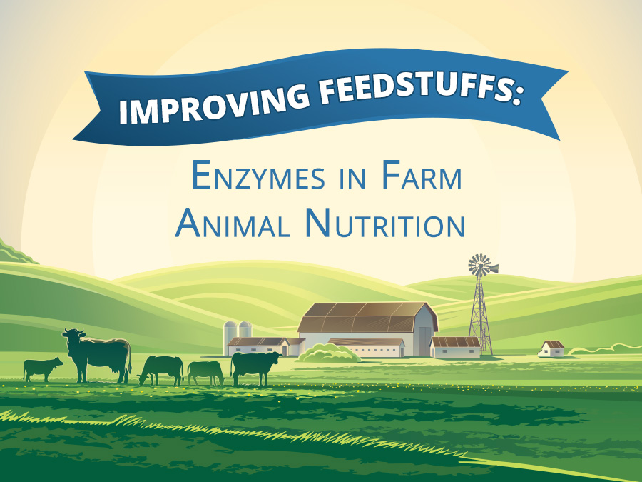 Enzymes in Animal Nutrition
