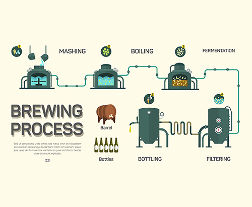 brewing process graphic