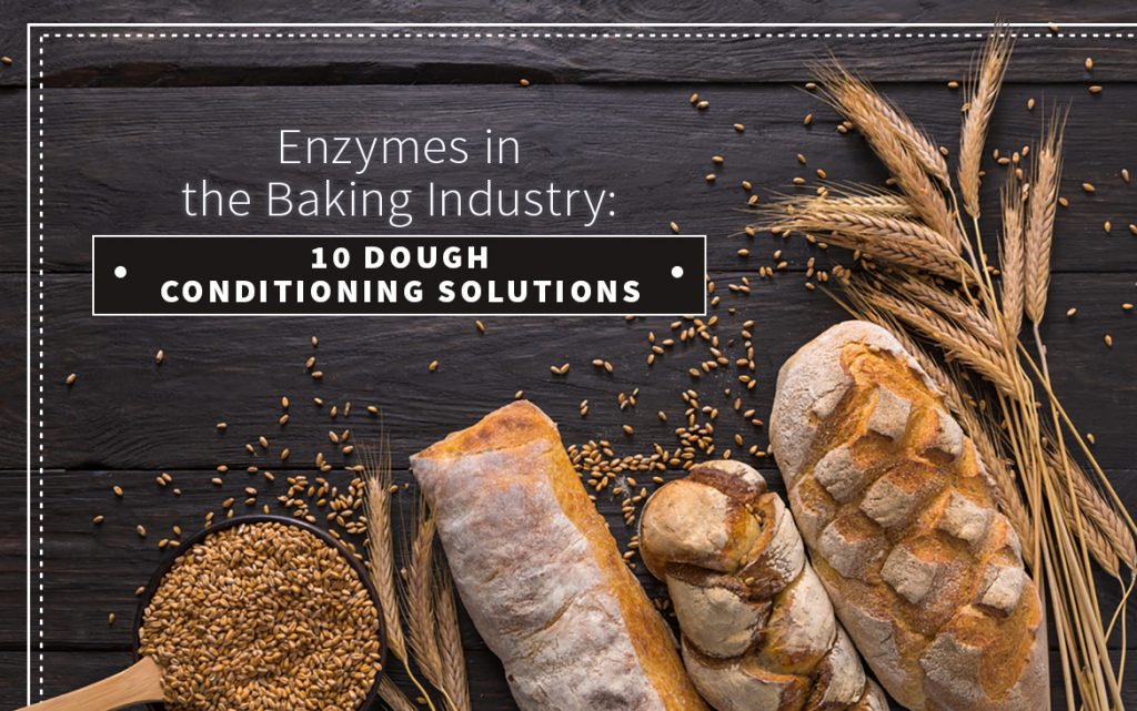 enzymes baking industry dough conditioning