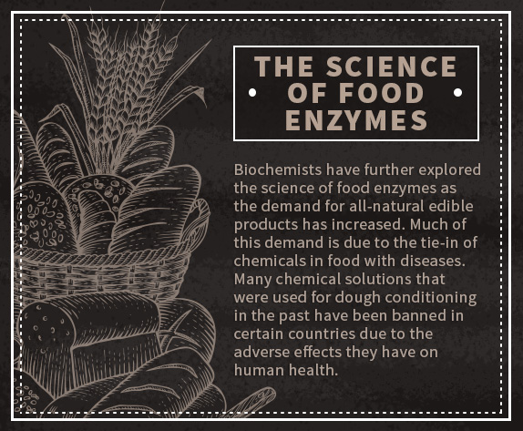 science of food enzymes quote